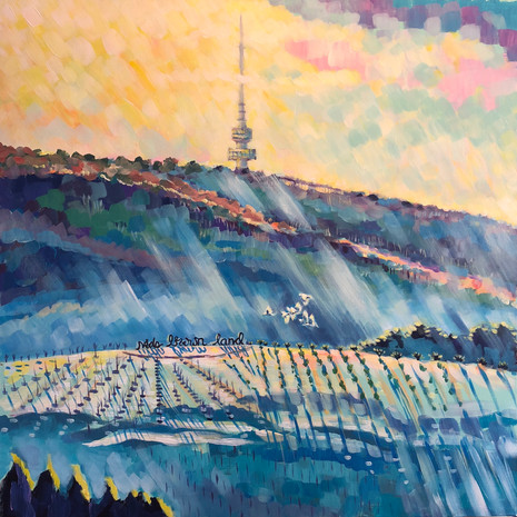Canberra Winter