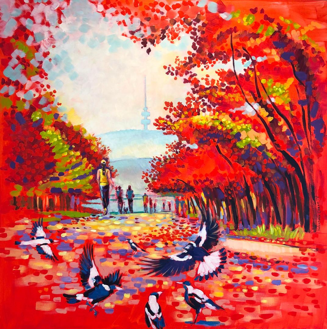 Canberra Autumn Season