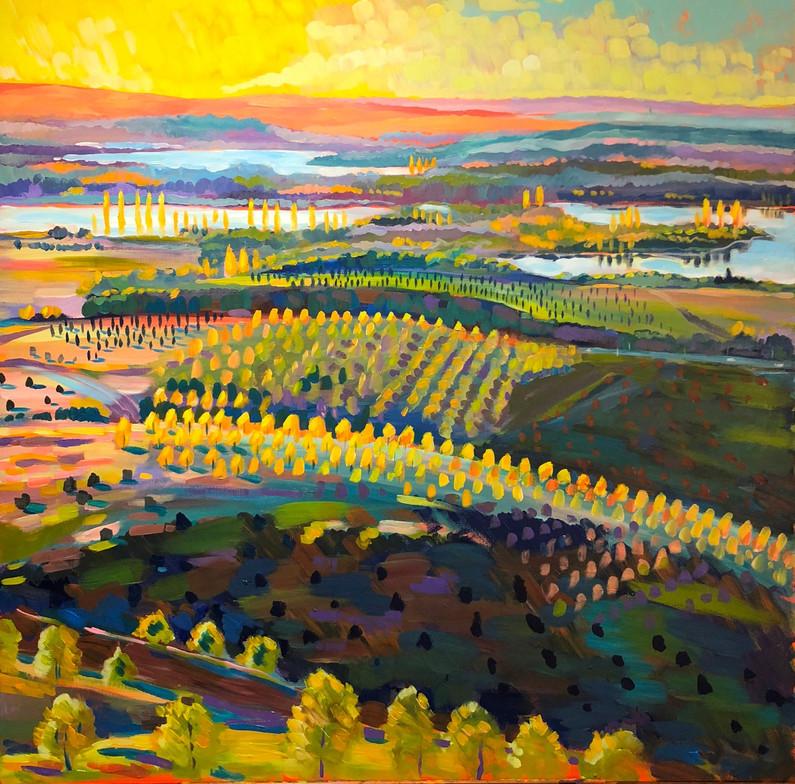 Golden Light, Canberra Morning