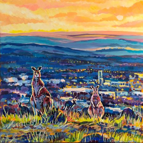 Canberra Locals 2