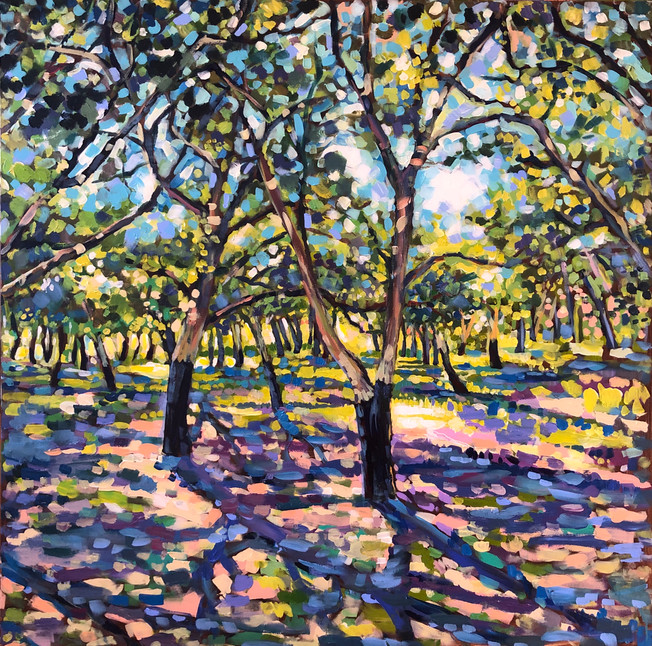 Forest 1 Cork Oak Trees