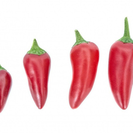 Capsicum annuum (Cayenne) & Sudden Cardiac Arrest