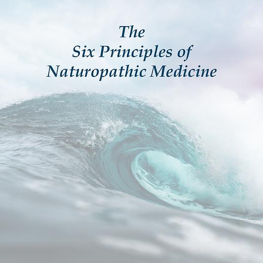 6 Principles-0.png
