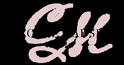 Logo-stor (1).png