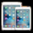 iPad Air 1,Air 2 Reparatur