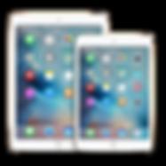 iPad Mini 4,3,2,1 Reparatur