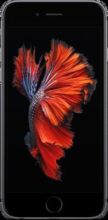 iPhone 6s Display Reparatur_31.03.2020