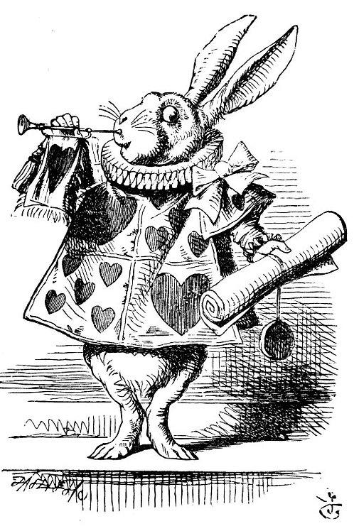 White Rabbit Membership