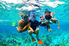 west-bay-aquarium-snorkeling.jpg