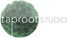 Taproot Studio