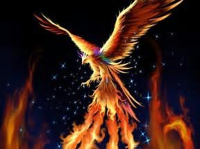 Like the Phoenix you can rise again!