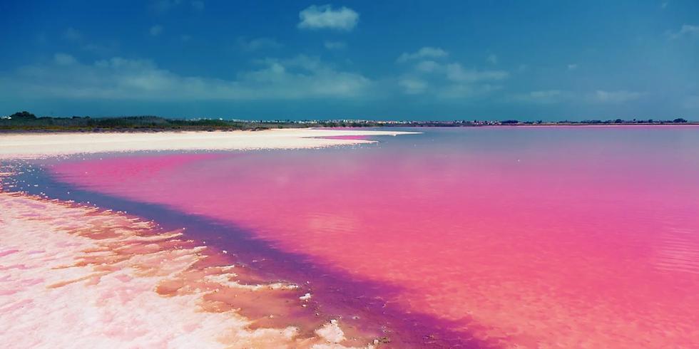 Alicante & Pink Lake