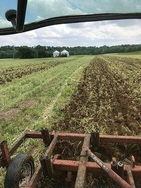 Organic Row Crop Production