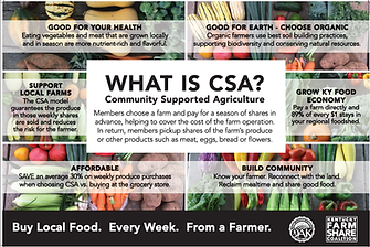 What is CSA Poster_temp.png