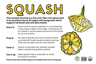 New version of squash front   .png