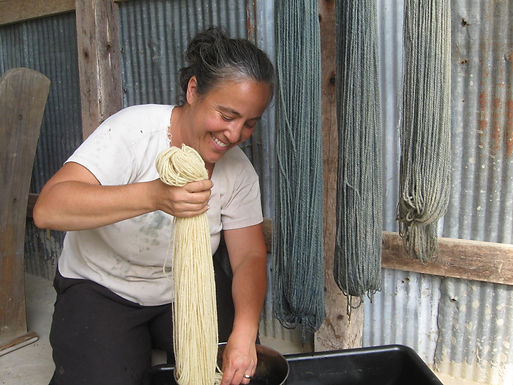 Wool, Botanical Dyes, and Value-added Fiber Marketing Field Day