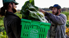 Growing Food in a Changing Climate