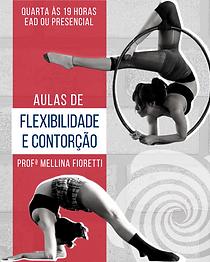 AULA_INAUGURAL_DE_FLEXIBILIDADE_E_CONTOR