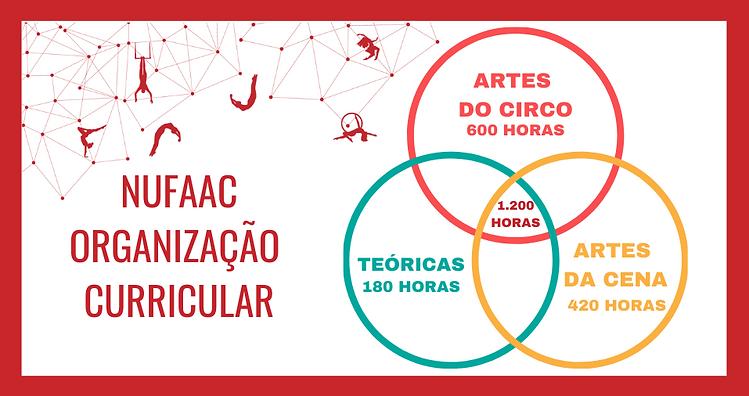 NUFAAC_ORGANIZAÇÃO_CURRICULAR.png
