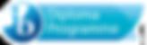dp-programme-logo-en.png
