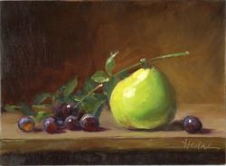 6_7 Anjou Pear