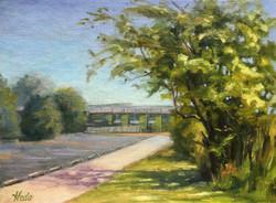 Cape May  Tree, 12 x 9