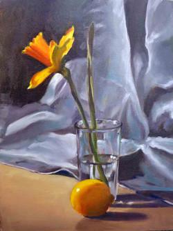 Daffodil in Glass