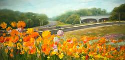 Flower Field, Exit 136, 20 x 10