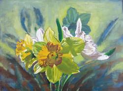 Daffodils in Backlight