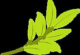 Le CPE au Jardin de Dominique, situé à Beauceville, comprend 3 installations de garde d'enfants et est également accrédité comme bureau coordonnateur de l'ensemble de la MRC Robert-Cliche. Nous priorisons les valeurs de santé, de respect, d'amour et d'autonomie pour tout le personnel éducateur.