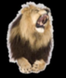 kisspng-lion-roar-stock-photography-shut