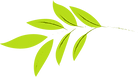 logo feuille 1.png