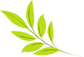 logo feuille 2.png