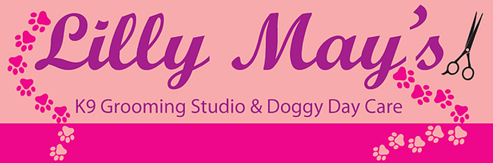 Lilly mays dog grooming totnes