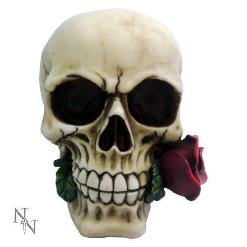 Rose From the Dead