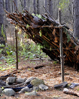 primitive shelter in the woods with a fi