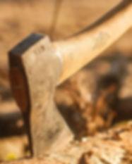 forest-2893608_1920_edited_edited.jpg