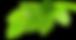 Grupo de folhas verdes