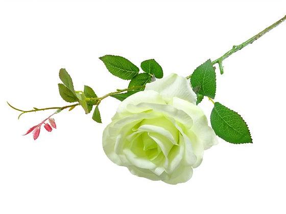 ROSE SPRAY CREAM/ GREEN 66CM/26IN