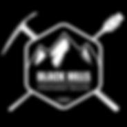 BHIS logo reverse.png