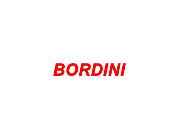 Bordini