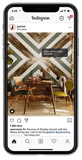 Instagram-Feed-iphonex.png
