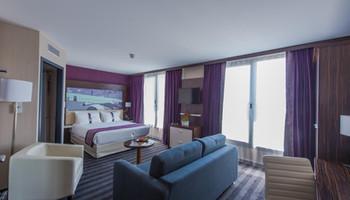 Holiday Inn Blagnac (3).jpg