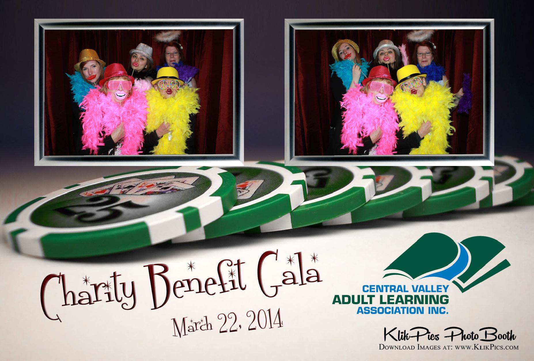 2014 Charity Benefit Gala