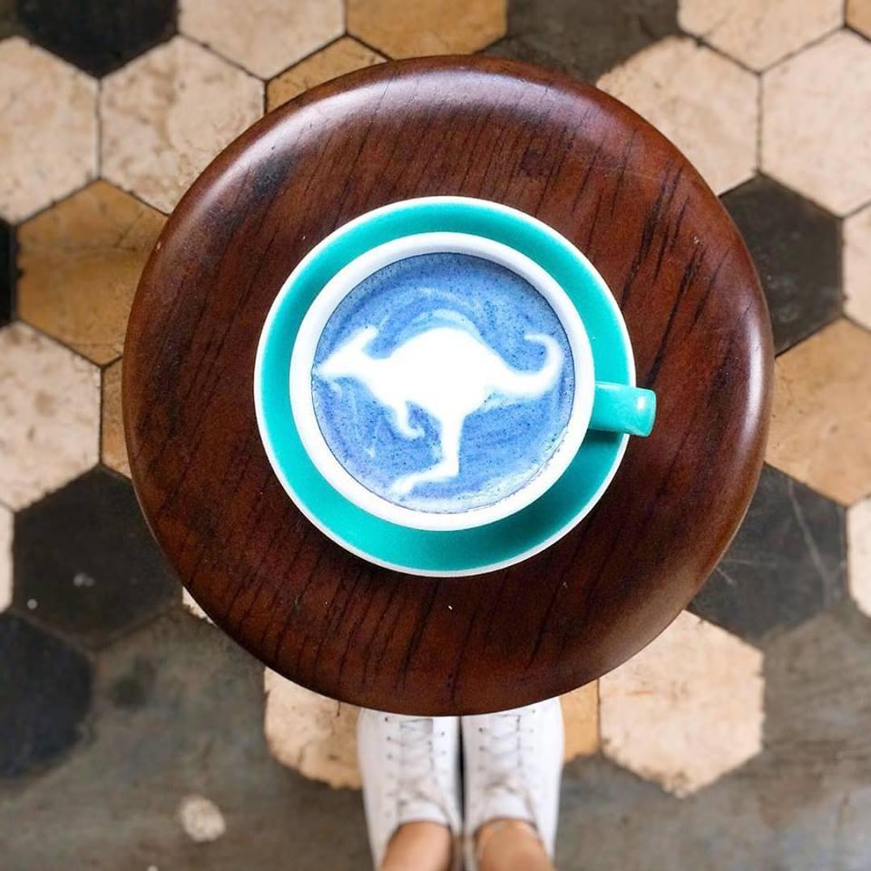 Blue Latte | MY BLUE TEA | BLUE TEA