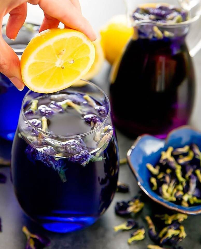 Butterfly Pea | Blue Tea | MY BLUE TEA