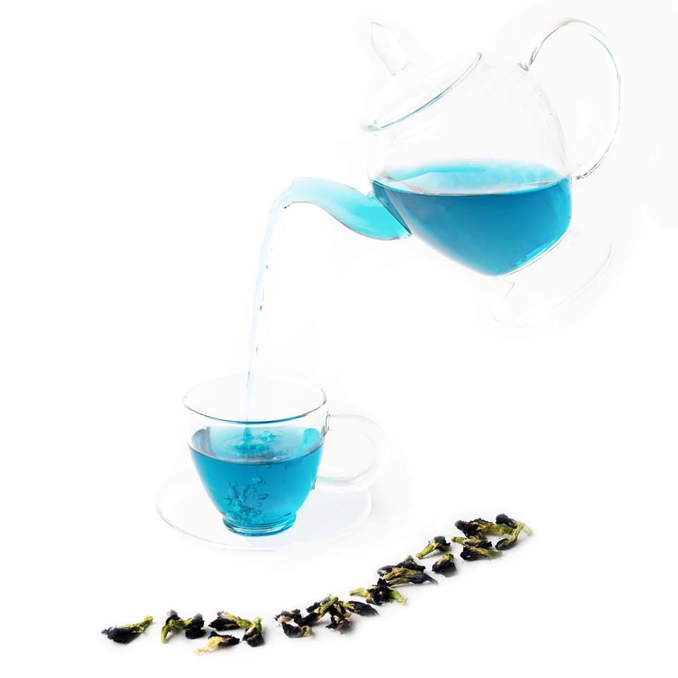 Butterfly Pea Flower Tea | MY BLUE TEA