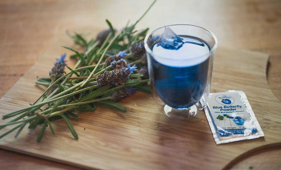 Butterfly Flower Tea | MY BLUE TEA