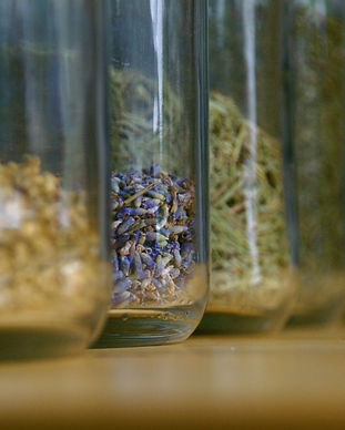 Herbs In Canister 2_Fav.jpg