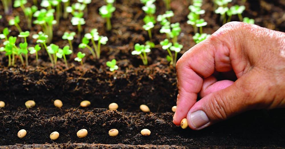 Photo Courtesy: Amenic181 | Dreamstime.com / hearingreview.com